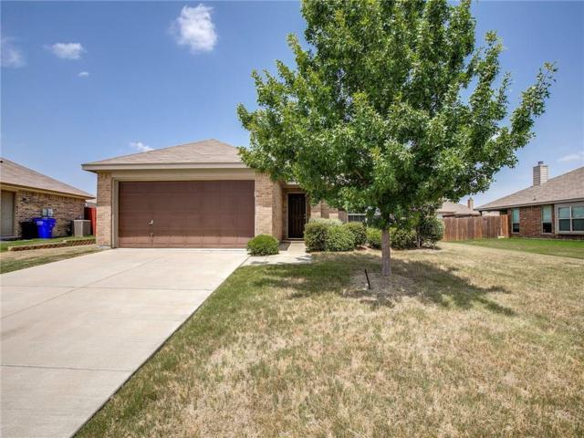 116 Velvet Court, Forney, TX 75126 (MLS #13891516) :: Exalt Realty