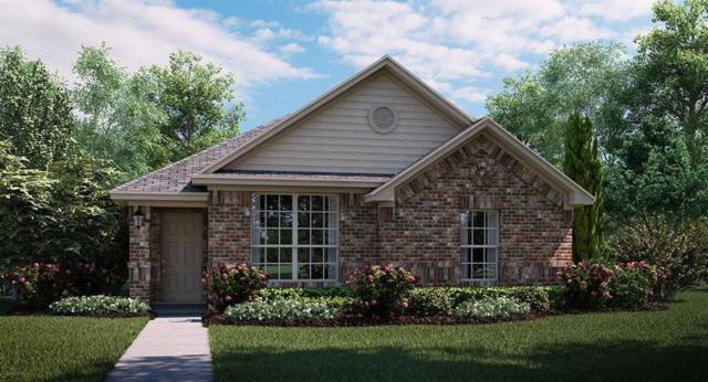 4008 Rain Lilly Drive, Forney, TX 75126 (MLS #13892648) :: Team Hodnett