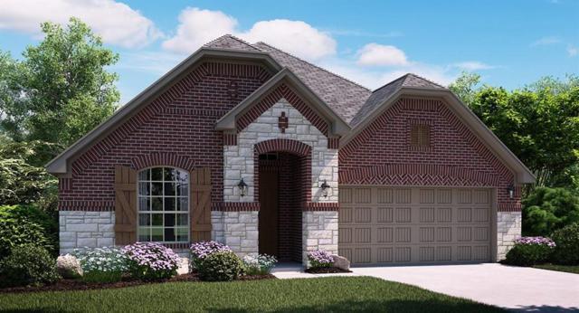 4219 Audubon Lane, Irving, TX 75063 (MLS #13893012) :: Team Hodnett