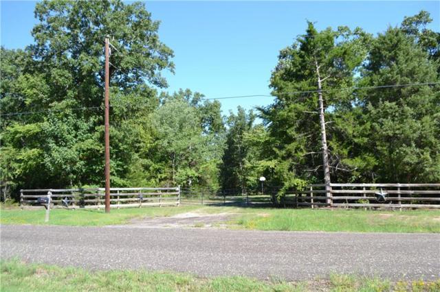 873 County Road 1785, Yantis, TX 75497 (MLS #13893015) :: Team Hodnett