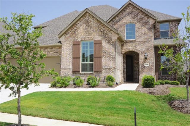 1309 Pitaya Drive, Lantana, TX 76226 (MLS #13893693) :: The Real Estate Station