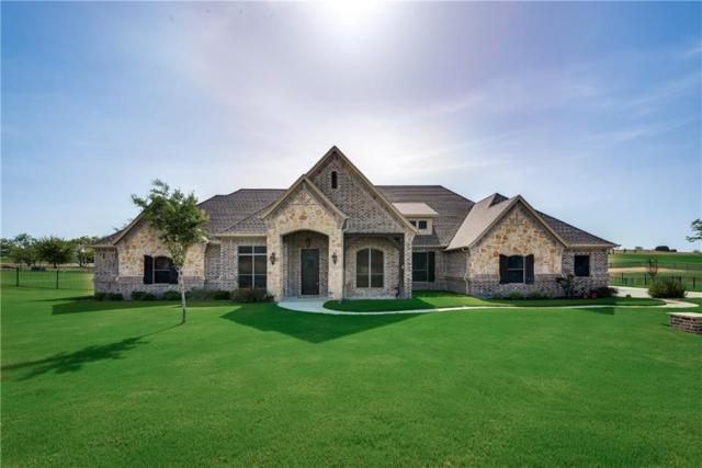 113 Condor View, Weatherford, TX 76087 (MLS #13894636) :: Kimberly Davis & Associates