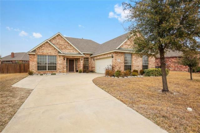 401 Parakeet Drive, Desoto, TX 75115 (MLS #13894728) :: Pinnacle Realty Team