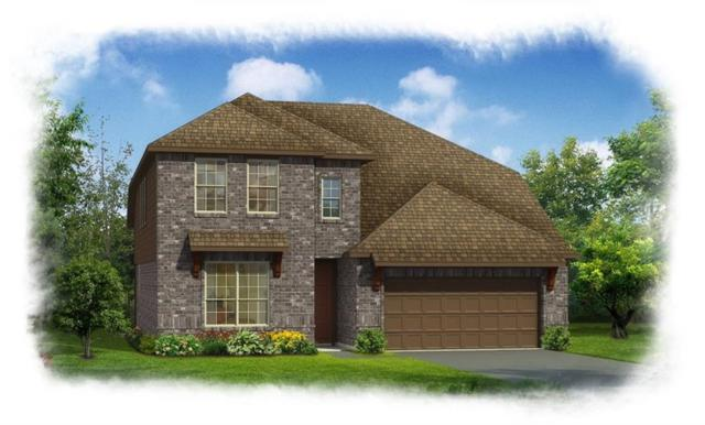 1731 Long Meadow, Wylie, TX 75098 (MLS #13896459) :: Team Hodnett