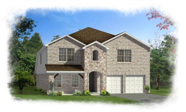 1700 Shady Hill Boulevard, Wylie, TX 75098 (MLS #13896467) :: Robbins Real Estate Group