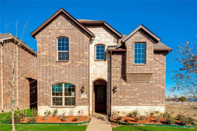 5126 Montego Bay Drive, Irving, TX 75038 (MLS #13897576) :: Team Hodnett