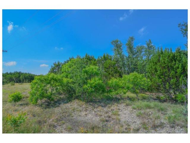 285 Peninsula Point, Bluff Dale, TX 76433 (MLS #13898119) :: The Real Estate Station