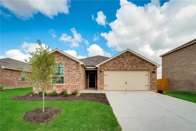 1811 Hot Springs Way, Princeton, TX 75407 (MLS #13898415) :: Team Hodnett