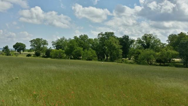Lot 8 Open Water Way, Streetman, TX 75859 (MLS #13898641) :: RE/MAX Town & Country