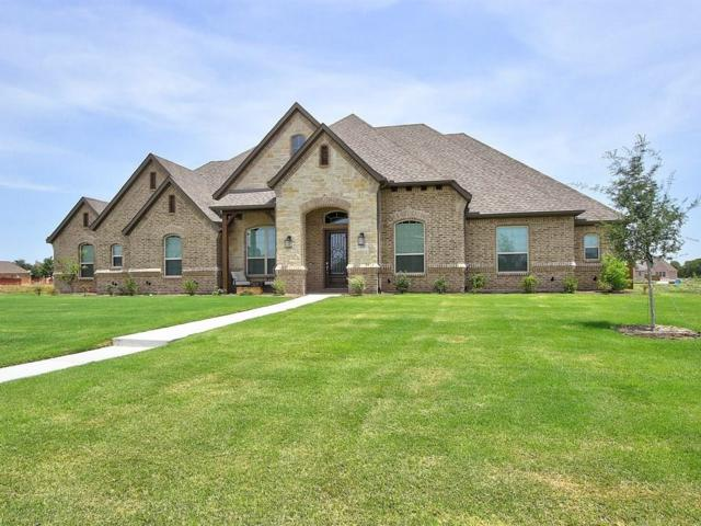 292 Morning Fog Lane, Sunnyvale, TX 75182 (MLS #13899105) :: Team Hodnett