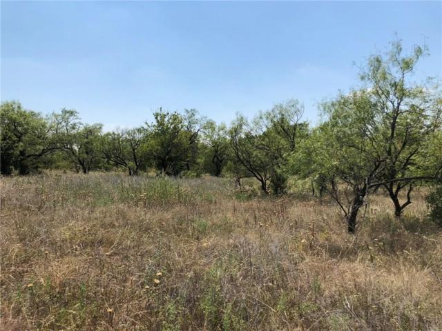 Lot 4 Cheyenne Drive, Runaway Bay, TX 76426 (MLS #13899138) :: Team Hodnett
