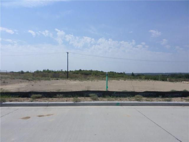 2117 Vanderbilt Drive, Weatherford, TX 76088 (MLS #13899284) :: Frankie Arthur Real Estate