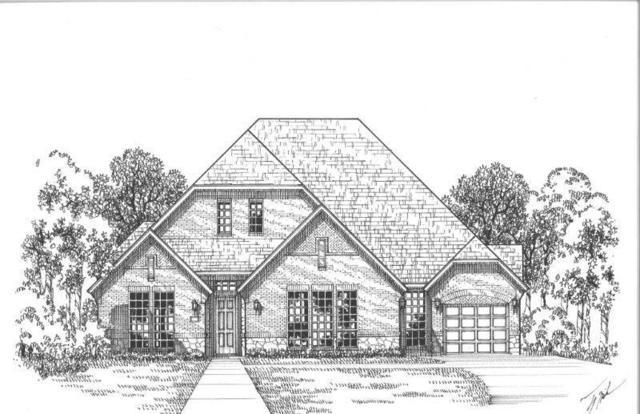 2250 Country Brook Lane, Prosper, TX 75078 (MLS #13899294) :: Team Hodnett