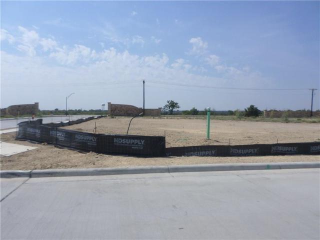 2132 Vanderbilt Drive, Weatherford, TX 76088 (MLS #13899394) :: Frankie Arthur Real Estate