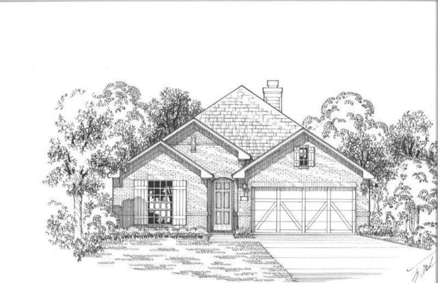 1124 Cottonseed Street, Little Elm, TX 76227 (MLS #13899634) :: The Real Estate Station
