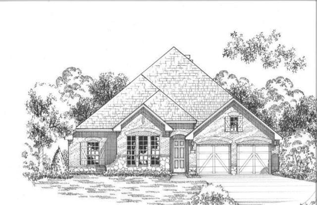 816 Fireside Drive, Little Elm, TX 76227 (MLS #13899654) :: The Real Estate Station