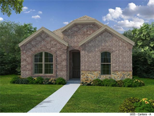 3647 Crosby Street, Irving, TX 75038 (MLS #13899894) :: Team Hodnett