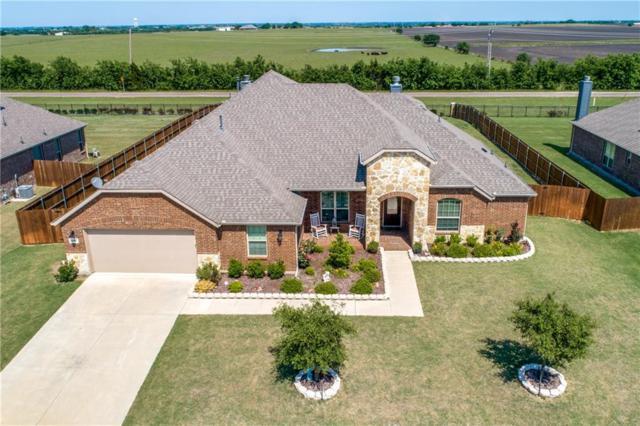 1317 Willard Lane, Celina, TX 75009 (MLS #13900643) :: Team Hodnett
