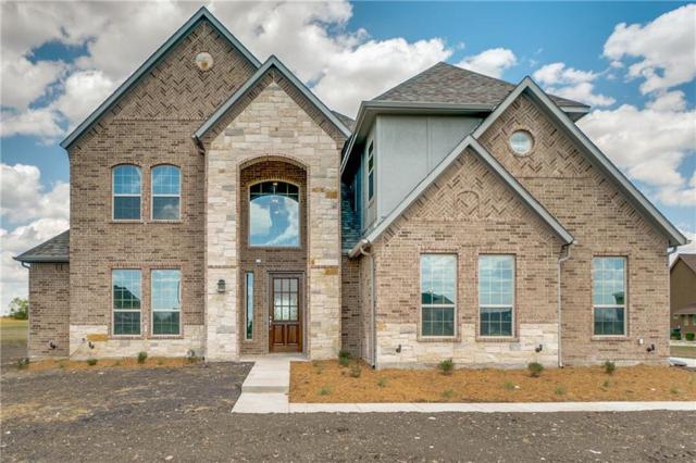 1630 Winding Creek, Rockwall, TX 75032 (MLS #13904872) :: Team Hodnett