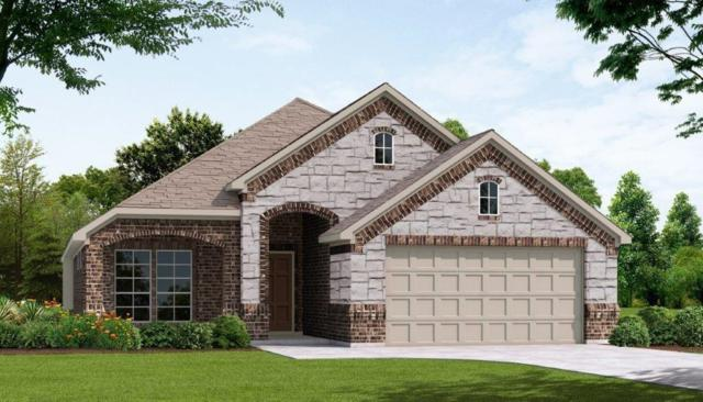 114 Old Spanish Trail, Waxahachie, TX 75167 (MLS #13905119) :: The Real Estate Station