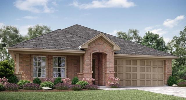 1300 Rembrandt Drive, Little Elm, TX 75068 (MLS #13905361) :: Team Hodnett