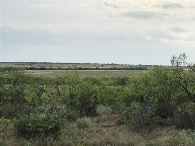 100 ac County Road 125, Winters, TX 79567 (MLS #13905952) :: Team Hodnett