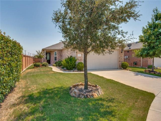 105 Montague Lane, Frisco, TX 75034 (MLS #13906378) :: Team Hodnett