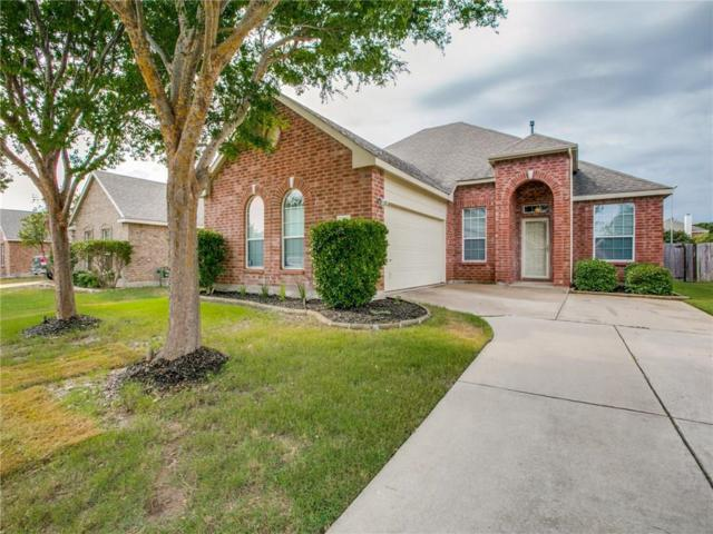 1538 Sleepy Hollow Drive, Allen, TX 75002 (MLS #13906644) :: The Rhodes Team