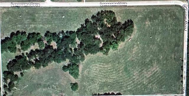 TBD1 Lonesome Dove Road, Farmersville, TX 75442 (MLS #13906873) :: The Heyl Group at Keller Williams