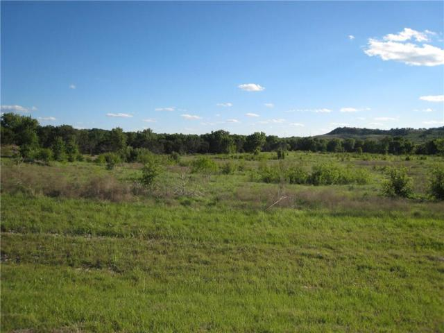 1428 Pk Hills Boulevard, Possum Kingdom Lake, TX 76449 (MLS #13908377) :: Team Hodnett