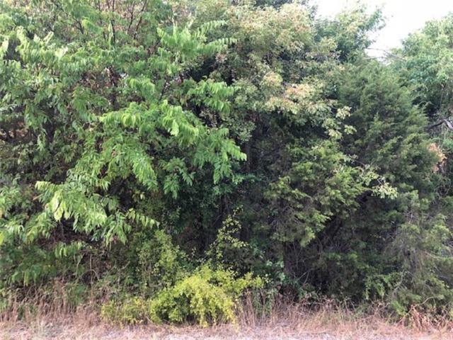 1131 Indian Drive, Granbury, TX 76048 (MLS #13909582) :: Frankie Arthur Real Estate