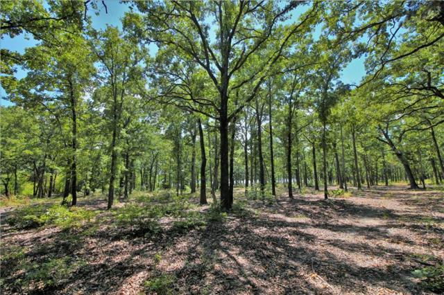 Lot 63 Anchor Point, Quinlan, TX 75474 (MLS #13909946) :: The Real Estate Station