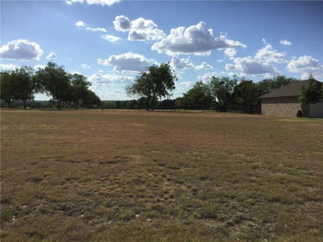 00 Holiday Hills Drive, Mineral Wells, TX 76067 (MLS #13910406) :: The Heyl Group at Keller Williams