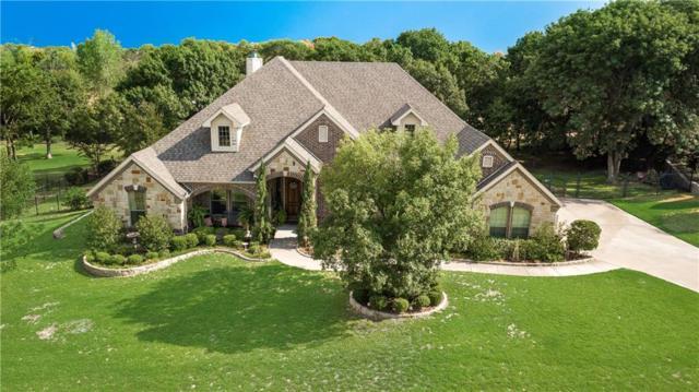 229 Copperwood Drive, Lakeside, TX 76108 (MLS #13910934) :: Team Hodnett