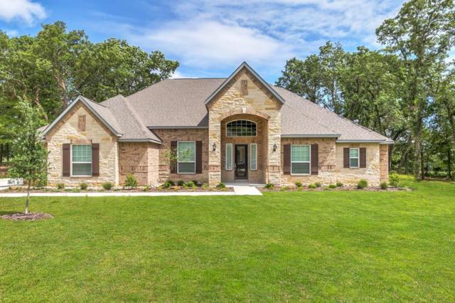 135 Spanish Oak Drive, Krugerville, TX 76227 (MLS #13911613) :: The Real Estate Station