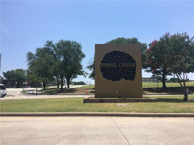 4037 Honeyapple, Fort Worth, TX 76137 (MLS #13912286) :: RE/MAX Landmark