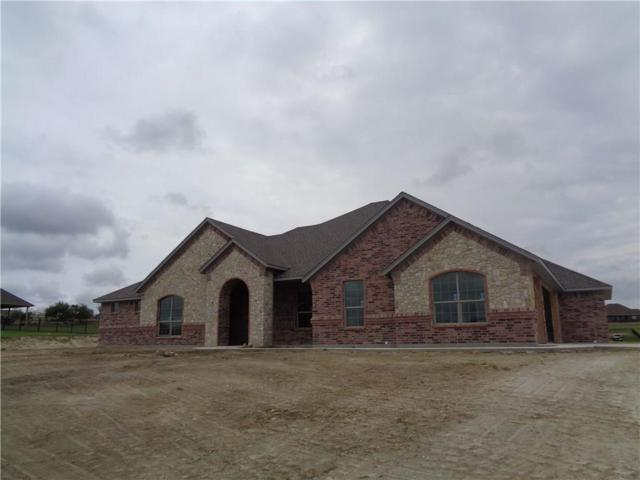 TBD Canyon West, Brock, TX 76087 (MLS #13912654) :: Real Estate By Design
