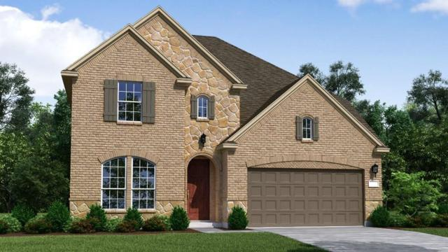 2009 Triton Drive, Mckinney, TX 75071 (MLS #13912851) :: Team Hodnett