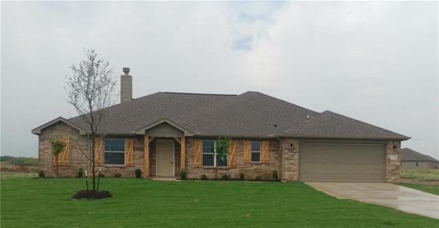 228 Springwood Ranch Loop, Springtown, TX 76082 (MLS #13913385) :: Fort Worth Property Group