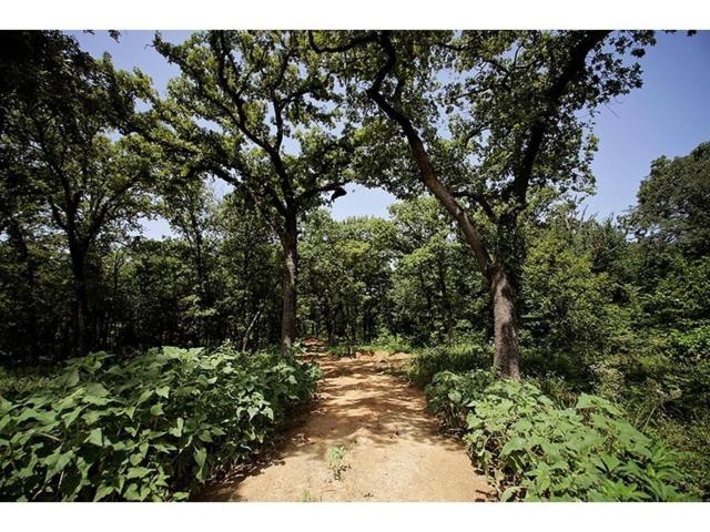 Lot 16 Robinson Canyon Road, Aubrey, TX 76227 (MLS #13913969) :: Real Estate By Design