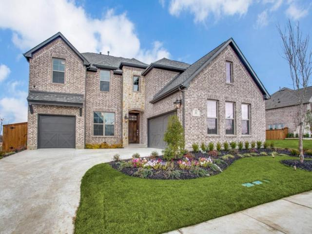 142 Timber Creek Lane, Frisco, TX 75068 (MLS #13914378) :: North Texas Team | RE/MAX Advantage