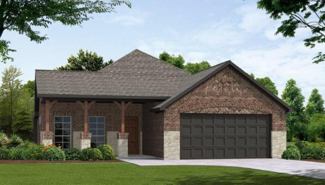 102 Sonterra Court, Waxahachie, TX 75167 (MLS #13914651) :: Team Hodnett