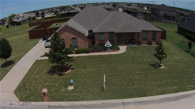 109 Western Drive, Fate, TX 75189 (MLS #13914733) :: Team Hodnett
