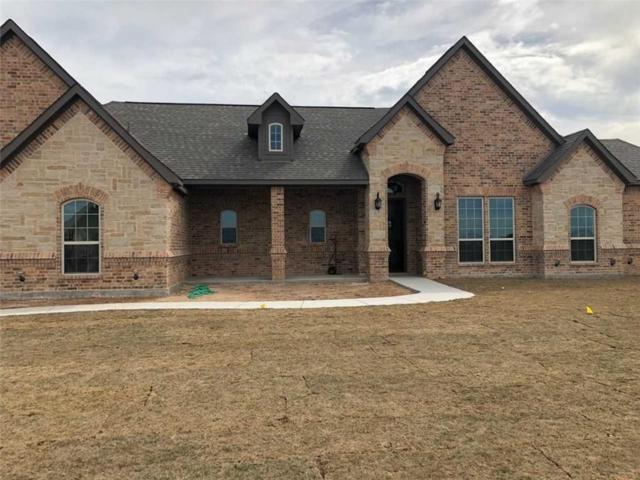1037 Jesse James, Springtown, TX 76082 (MLS #13915028) :: Team Hodnett