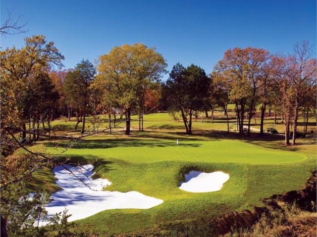 169 La Paloma Circle, Gordonville, TX 76245 (MLS #13915300) :: Frankie Arthur Real Estate