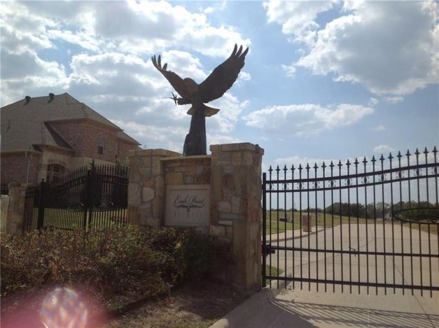 1109 Stone Ridge Lane, Desoto, TX 75115 (MLS #13915776) :: The Real Estate Station