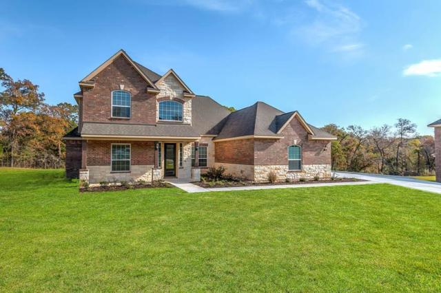132 Spanish Oak Drive, Krugerville, TX 76227 (MLS #13916312) :: The Real Estate Station