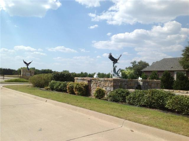 923 Joe Boy Court, Desoto, TX 75115 (MLS #13916561) :: The Real Estate Station