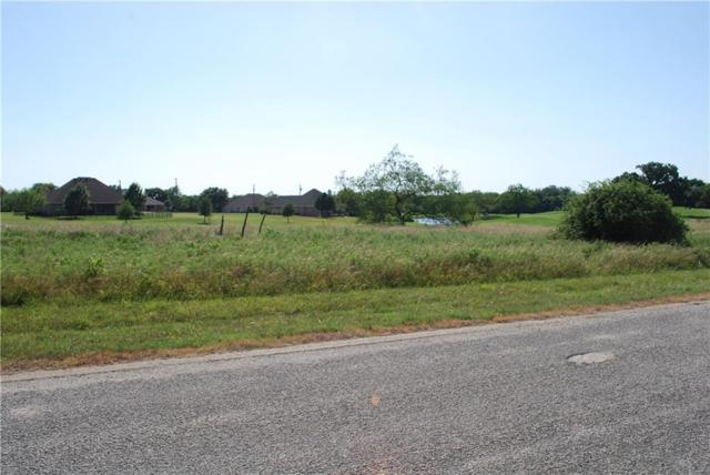 27191 Whispering Meadow Drive, Whitney, TX 76692 (MLS #13917151) :: The Heyl Group at Keller Williams