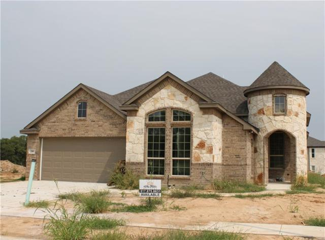 248 Marina Drive, Azle, TX 76020 (MLS #13918760) :: RE/MAX Town & Country